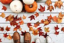 Thanksgiving & Fall / Thanksgiving recipes, Fall decor, kids crafts for Fall, autumn ideas