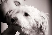 dog love / by Delores Arabian (Vignette Design)