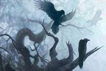 Nevermore / Ravens and crows