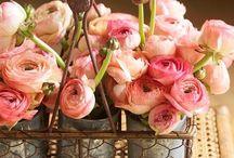 パステル 花 Pastel Flowers / パステルカラーを中心にアレンジが多いです