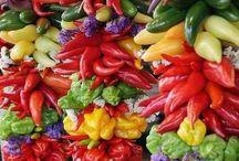Spice&Herb