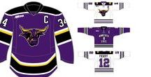 Our Custom Hockey Jersey Designs / Designs on Sublimated and Knit Jerseys. From Universities in the WCHA to youth teams of all ages, check out the concepts we created to keep all skaters happy and looking fresh!