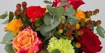 Collection bouquet de fleurs et composition florale / Des bouquets de fleurs et compositions florales spécialement conçues par nos artisans fleuristes. Livraison 24h partout en France.