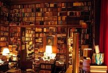 Bookshelves / bookshelves and different ways to arrange your books