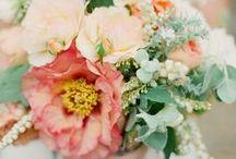 Wedding FLOWAHS. / by Heidi Koling