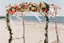 Wedding CEREMONY. / by Heidi Koling