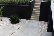 Garden  / Garden, plant, grad, lawender, olive, minimalist