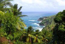 Caribbean Islands / The Caribbean, where it is Summer all year long. /// El Caribe, donde el clima es Verano todo el año.