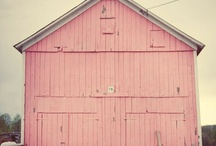 BarnsKat / maybe someday i can remodel a barn to live in...