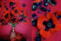 Color Palettes / by Kristy Marie Thomas