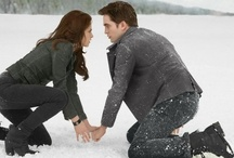 ❤ The Twilight Saga ❤ / by Erica Goergen