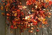 Fall - Thanksgiving and a lil' Halloween / Fall and thanksgiving ideas  / by Kimberly White
