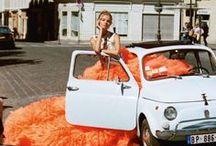 Fashion +Auto Kat