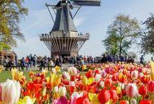 Holandesando | Blog / Posts e fotos do Blog. Conheça a Holanda além de Amsterdã! https://holandesando.com  Holanda, viagem, Amsterdam, Amesterdão, Rotterdam, Utrecht, dicas da Holanda, o que fazer na Holanda, Europa, campos de tulipas, keukenhof