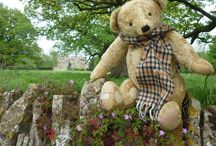 Aloysius / Aloysius is one of the world's most famous bears. Seen by millions around the world in the TV series of Brideshead Revisited where he starred alongside Anthony Andrews as Sebastian Flyte. Aloysius is on permanent display at Teddy Bears of Witney.