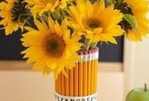"""Back to School / Celebrate the """"Back to School"""" season with decorations, DIY projects and great lunch ideas."""