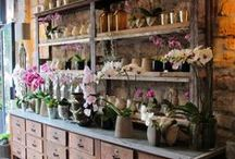 Dream job / Garden & Flower Shop - Homemade Goodness - All things Pretty