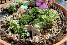 To Do: Fairy Garden Ideas / Want some amazing ideas for a fairy garden? This board is for you!