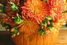 Autumn Halloween / fall decorating, treats, Halloween ideas.. the works! / by Tiffany Mouritsen