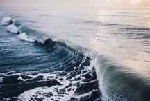 SEA-THROUGH / by Camille