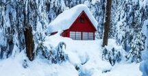 ♡ ╯setting : winter !