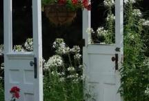 Gardens/Yard / by Kathy Lewis