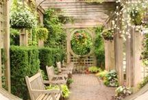 Gardening tips/ideas / The best ideas and tips to create and grow the garden of your dreams.