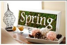 Springtime / Your ultimate guide to springtime inspiration around the home. Spring Flowers. Spring Cleaning. Spring Checklists. Spring Decor. Spring Colors. Spring Home.