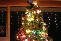 Favorite tree...Christmas tree / by Barbara Courtney