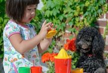 Plasto Durable Plastic Toys / Created in Finland to the highest European standards, Plasto toys are aimed at children aged one to six years, providing them countless hours of pleasure and learning through play. Plasto prides itself on the durability of its toys, which are manufactured with kids in mind – think few moving parts, thick resins (which are approved for food industry use), no sharp edges, and colour-fastness to ensure their joy doesn't fade.