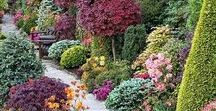 Home and Garden Designs Ideas / Best ideas for your home and garden from my shop life style