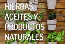 Hierbas, Aceites y Productos Naturales / Preparar aceites con hierbas naturales. Conocer las mejores plantas para tu hogar. Limpiar las malas energías con el poder de las plantas.