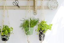 Spring ★... / BLOG: www.karinecandicekong.com IG: http://instagram.com/bodieandfou FB: http://www.facebook.com/BODIEandFOU CONCEPT STORE: http://www.bodieandfou.com/