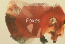 // FOXES // / by Foxy Originals