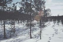 ••WINTER••