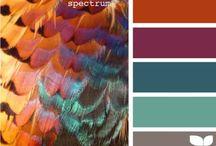 Kleur en combie's / Meng de basiskleur op gevoel,  Kies daarbij het passende kleurplaat!