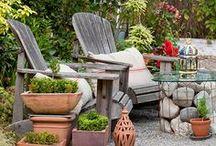 My Backyard / by Tamera Dutton
