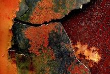 texture / by Judith Jurica