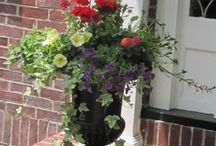 Front Porch / by Tamera Dutton
