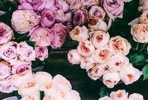 { flowers } / flowers