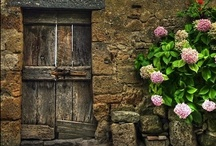 Great Doors / by Esther Glumace