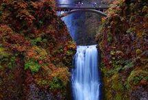 waterfalls / by Kerry Dumas