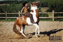 Entre caballos y naturaleza / Sesiones temáticas en las que tu decides qué escenografía quieres, en www.bookfotosbarcelona.es nos desplazamos con nuestro estudio donde tu elijas.