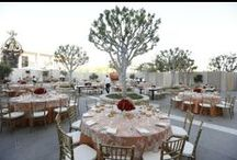Special Occasions Event Planning / by Revelry Event Designers