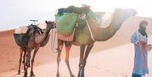 Marokko / Kunne du tænke dig at udføre frivilligt arbejde i Marokko? Læs mere her: http://www.icye.dk/marokko