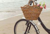bicycles / by Kerri Jordan