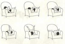 A Bit Bookish / bibliophile <3 / by Michelle Barrett