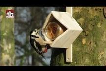 Vogelproducten in gebruik