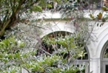 BEAUTIFUL GARDEN PATIOS,  LANDSCAPING AND FOUNTAINS / by Cindy Lee
