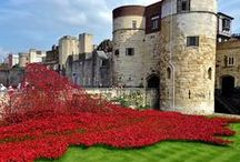 #TowerPoppies / A Timeline documenting the 'Blood Swept Lands and Seas of Red' memorial installation commemorating WWI surrounding the Tower of London